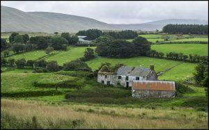 deserted-homestead